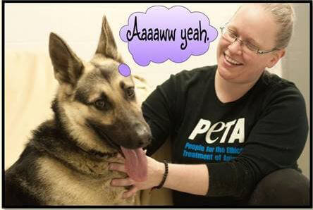 Sergeant With PETA Staffer