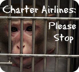 Charter Button