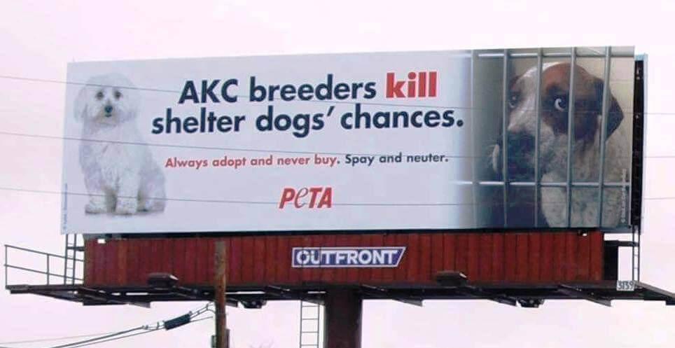 """PETA """"Breeders Kill"""" Billboard"""