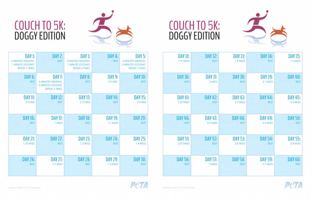 Couch To 5k Doggy Edition Peta