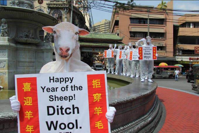 PETA Asia Year of the Sheep