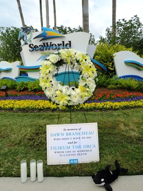SeaWorld memorial3