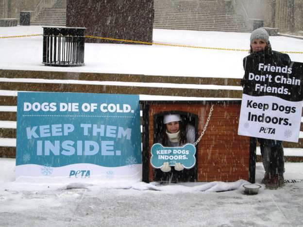 PETA Demonstrators Protest Dogs Being Chained Outside in Cold