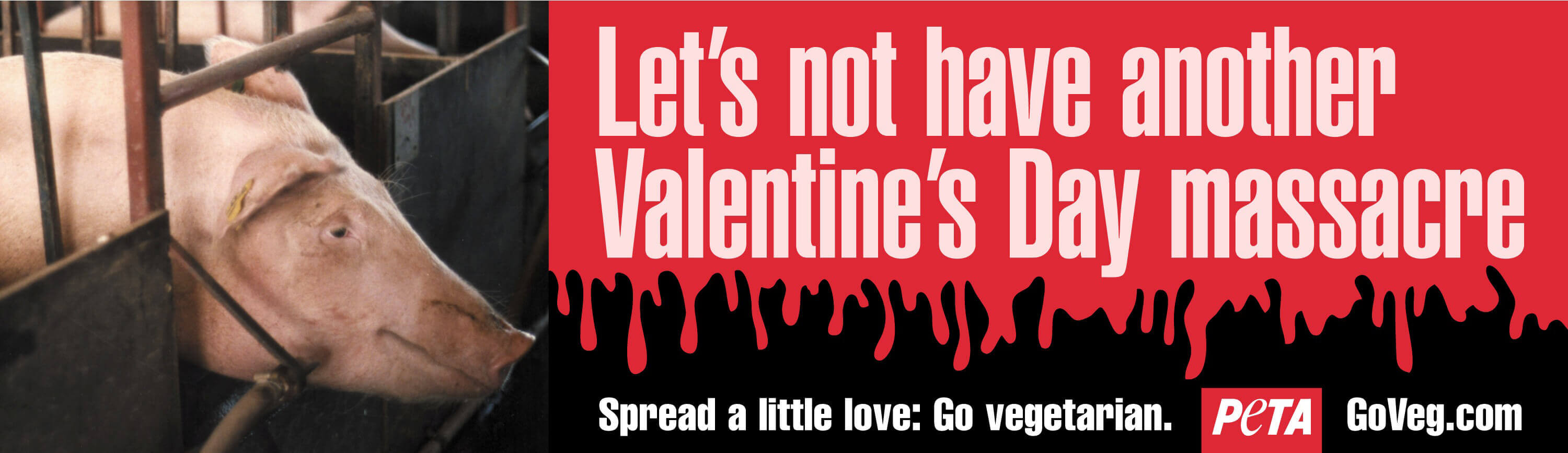 Let's Not Have Another Valentine's Day Massacre