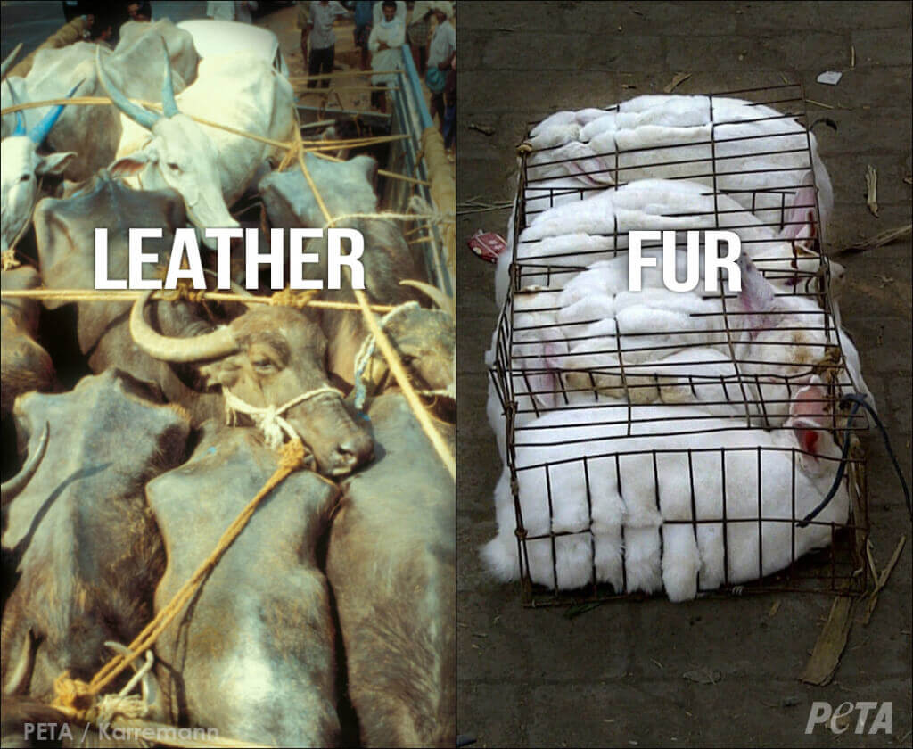 ABUSED Leather vs Fur