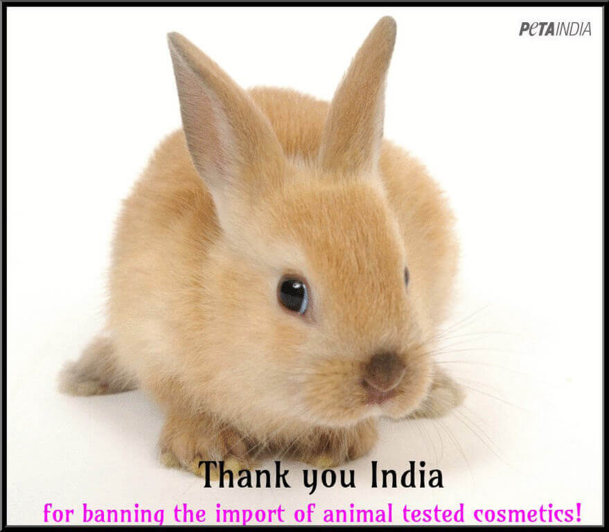 2014 – India Bans Animal-Tested Cosmetics
