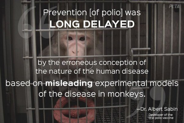 animal testing is wrong Polls since 2001 have shown an increase in moral opposition to medical testing on or morally wrong to animal testing is steadily.