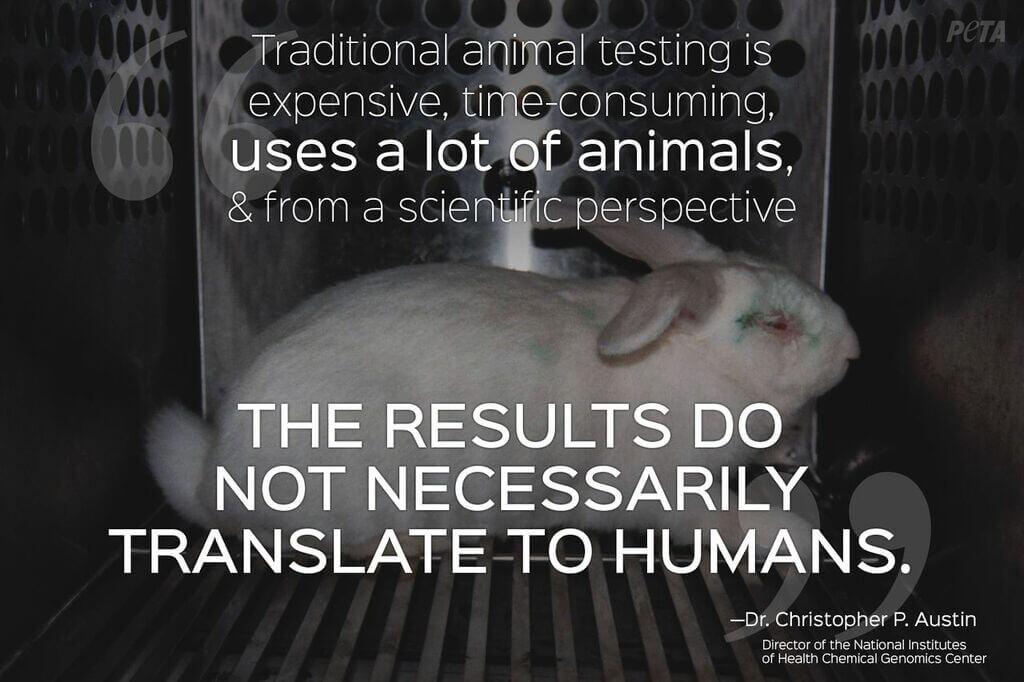 Is Animal Testing Bad? Expert Quotes Prove Animal Testing Is ...