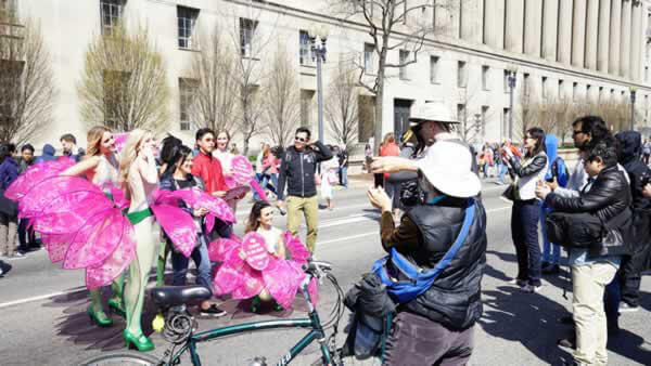 PETA  at National Cherry Blossom Festival in Washington, DC