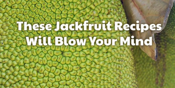 Jackfruit Recipes That Will Blow Your Mind (and Taste Buds)