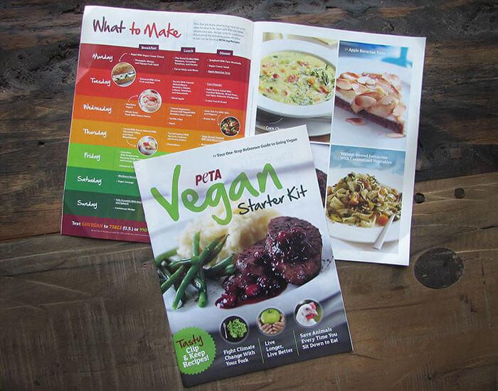 Vegan Starter Kit (VSK)