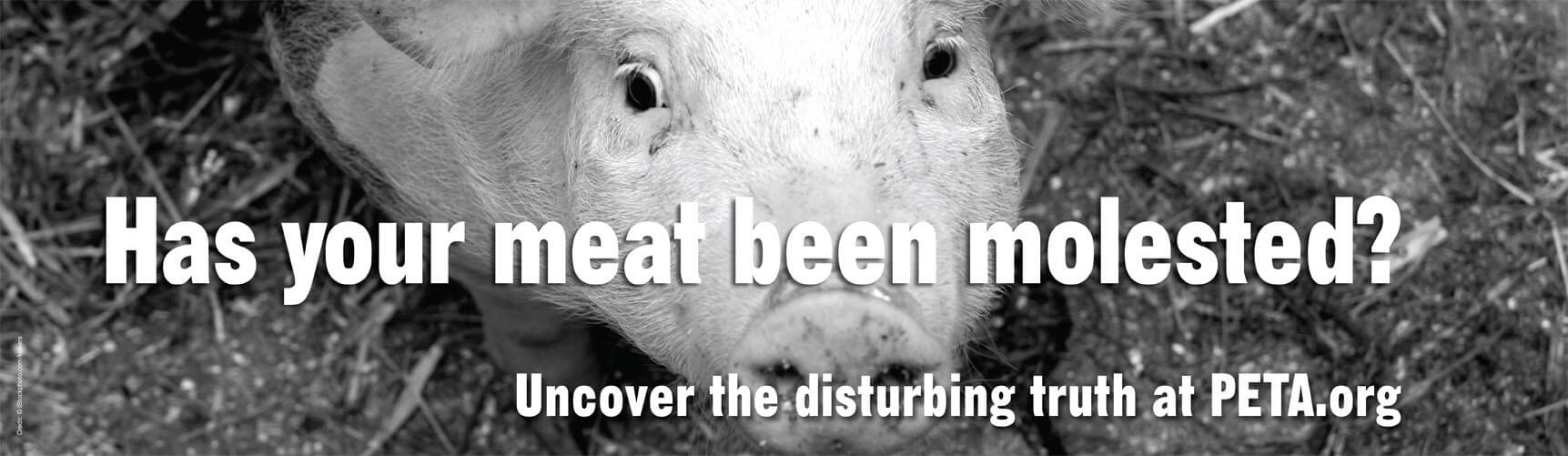 Sexual Abuse Molested Meat billboard bb