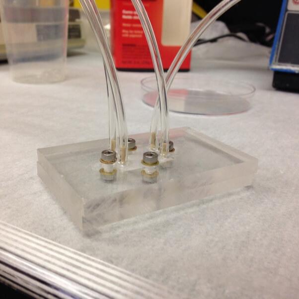 Iowa State University Organ-on-a-Chip Prototype