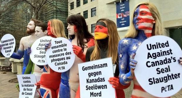 Flag-Painted PETA Supporters Protest Globally Condemned Seal Slaughter