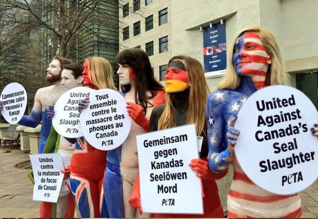Body-painted Activists Protest Canadian Seal Slaughter