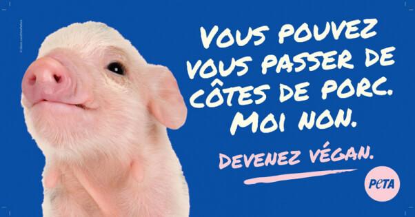Devenez Vegan French PETA BB