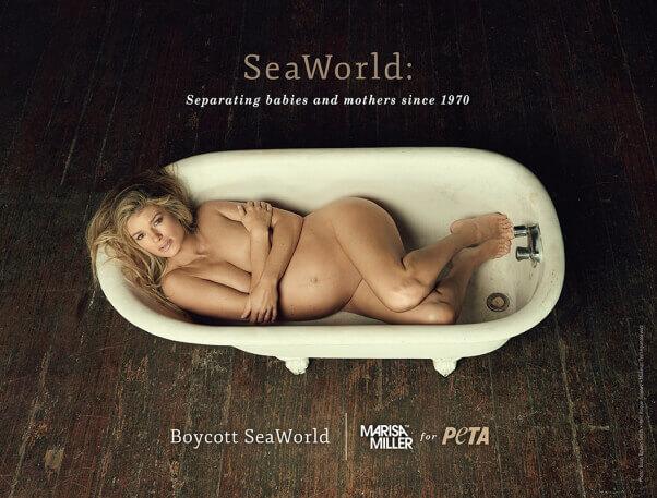 Marisa Miller: Boycott SeaWorld