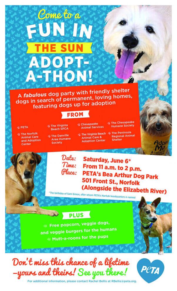 adoptathon poster