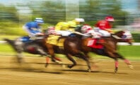 7 Horses in 10 Days Dead at Del Mar Racetrack