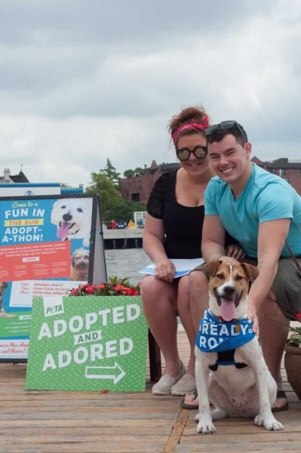 Joey, a PETA rescue you may remember from this very blog, found his perfect match in a young couple from  Virginia.