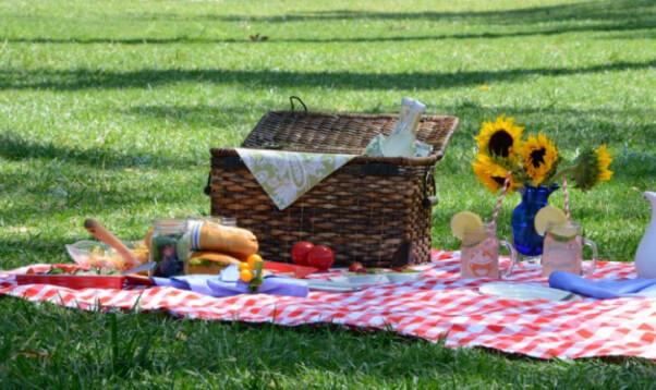 Grassy picnic