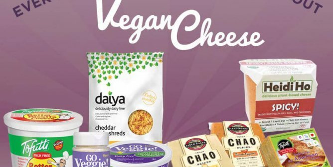 Everything You Need to Know About Vegan Cheese | PETA