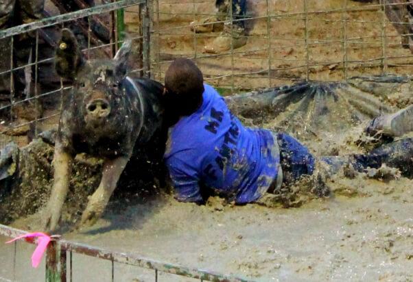 Pig-Wrestling-tackle-close-up