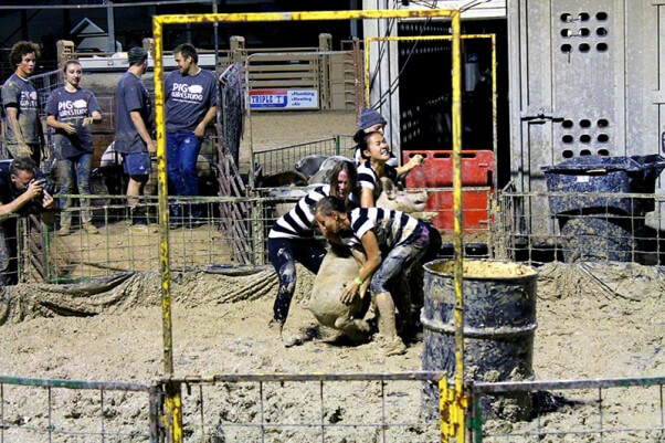 girls attempt to lift pig at pig wrestling event