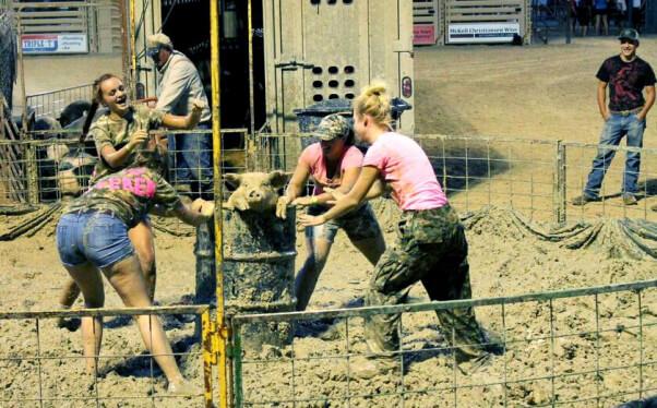 girls surround pig in barrel at pig wrestling event