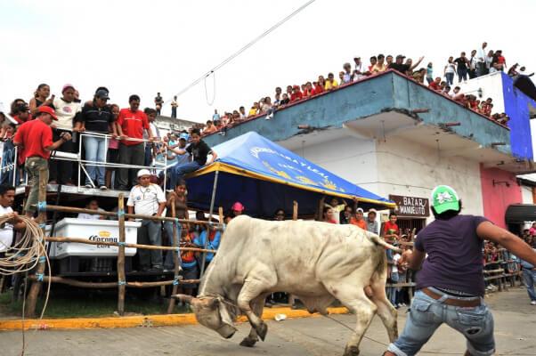 The 14 Worst 'Festivals' Still Taking Place Today | PETA