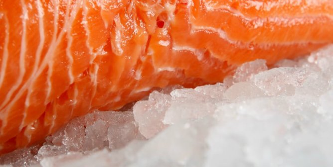 Watch: Live Worms  In Packaged Fish  That's a Thing  | PETA