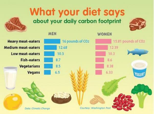 dietary carbon footprint graph