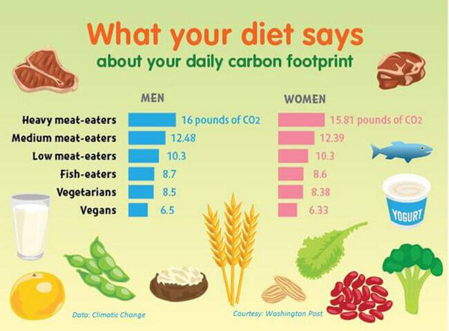 Fight Climate Change With Diet Change | PETA