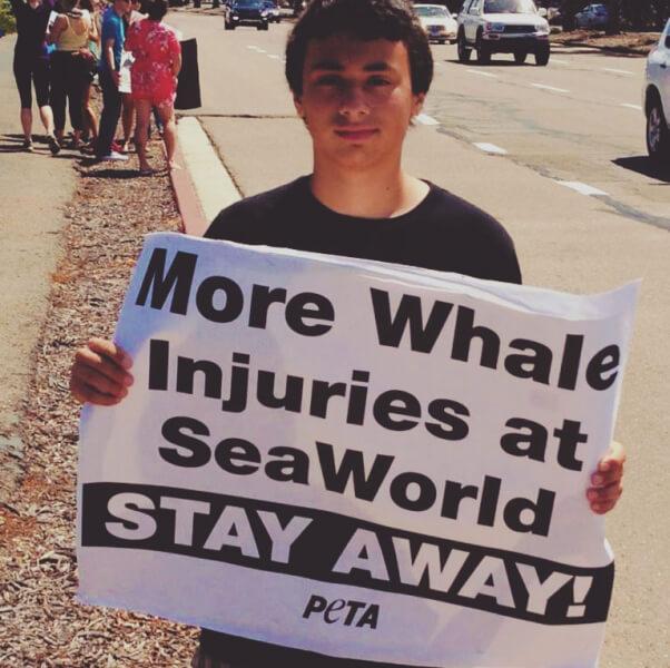 seaworld protest