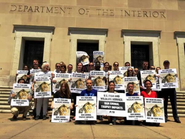 Washington, D.C., demonstration for Cecil the lion