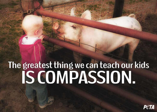The-Greatest-Thing-Teach-Kids-Compassion-PETA