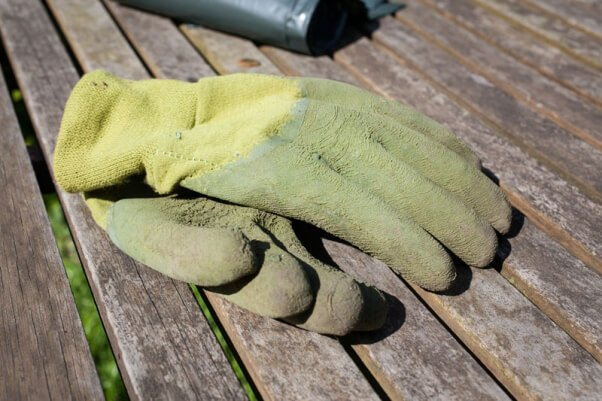 thick gloves for animal rescue kit