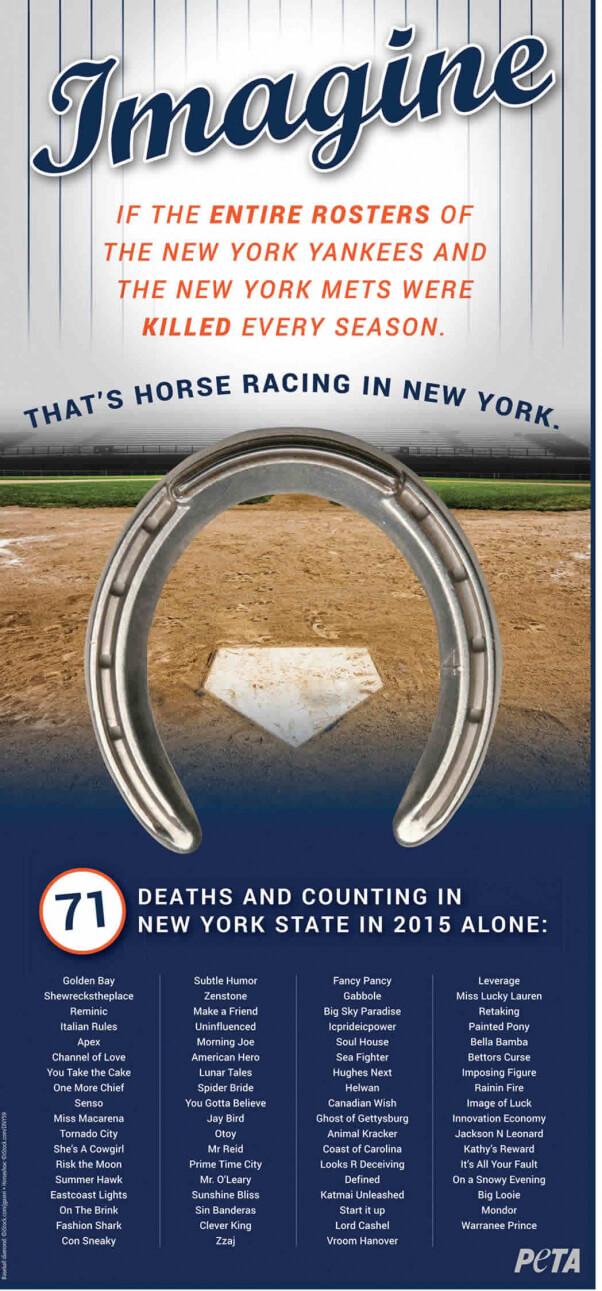 NY Horse Racing 'Imagine' Ad