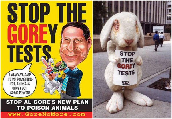 "Photo o PETA ""rabbit"" Gorey"