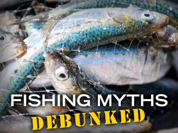 PETA-social-fishing-myths-debunked-v2