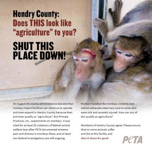 Anti-Primate Products ad