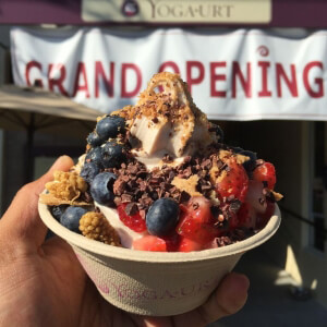 Vegan Frozen Yogurt Shop, Yoga-urt, Opens in California