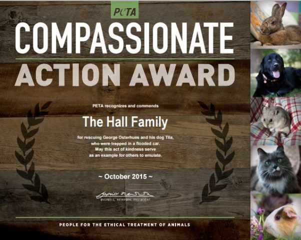 Compassionate Action award for Hall family