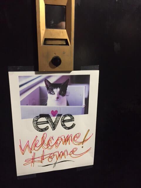 Welcome home, Eve