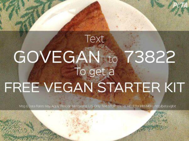 vsk-textin-thanksgiving-3