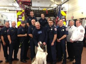 Rescue Teams with Milo