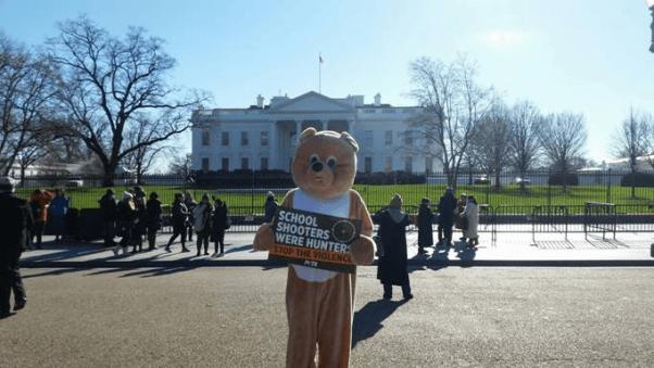 gun violence bear