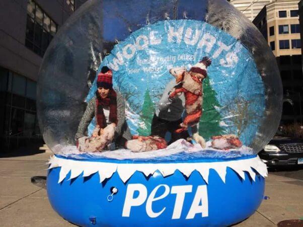 Snow globe anti-wool demonstration