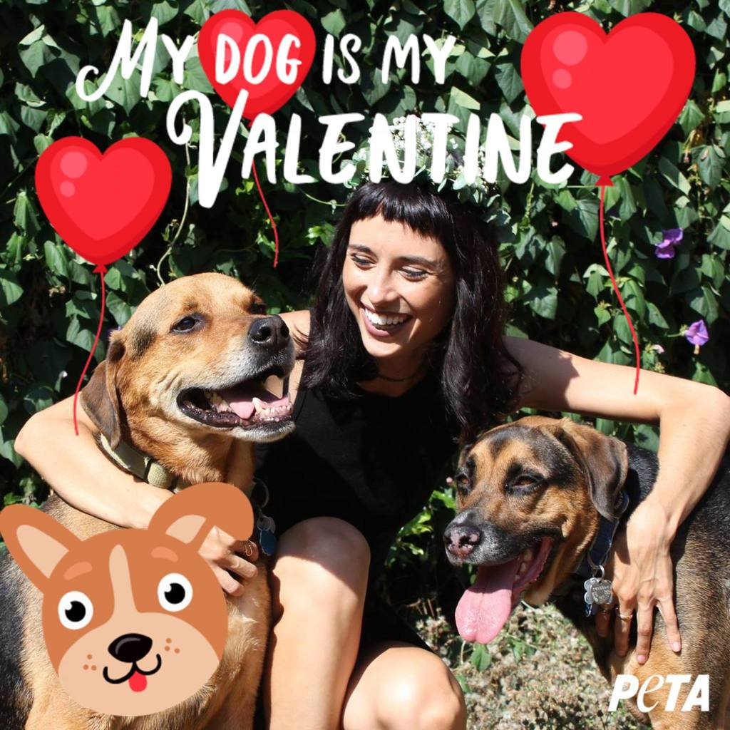 Why My Canine Valentine Will Always Have My Heart