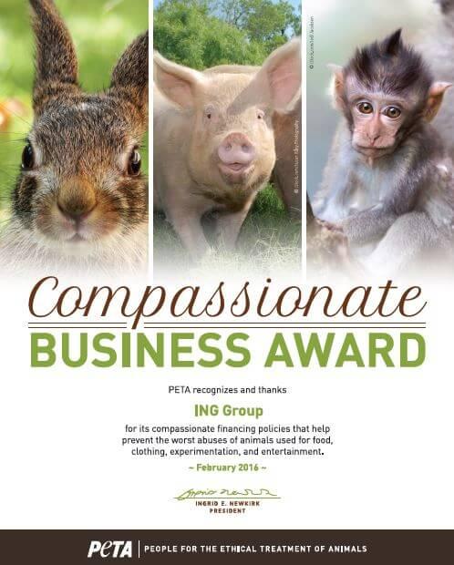 ING award certificate